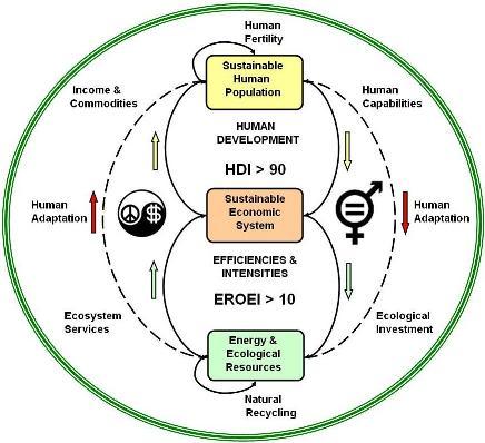 Ecological crisis essay
